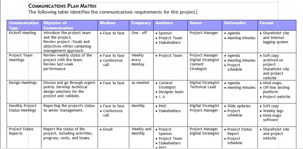 Digital Communications Plan Matrix Example
